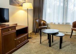 Comfort suite Crown Inn Eindhoven zitgedeelte